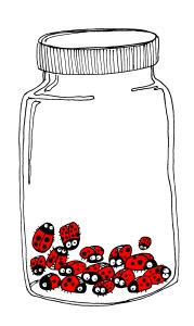 LadybirdJarwhitelid