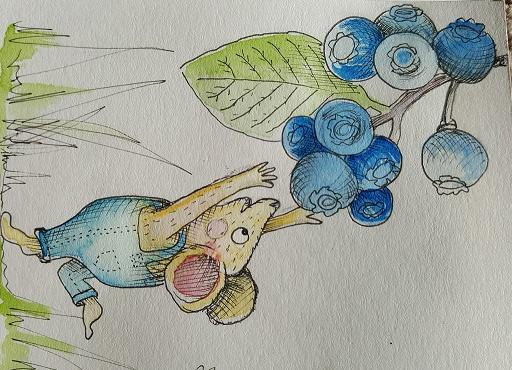 BlueberryMouse1